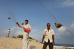 Palestinian men take out a quail from a net after catching it on a beach in Khan Younis, in the southern Gaza Strip September 14, 2019. Palestinians erected hundreds of meters of nets along the coastline in the Gaza Strip to hunt migratory birds, mainly quails, which arrive to the coasts of the Mediterranean in the second half of September of each year. Photo by Ashraf Amra