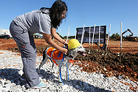 NWA Democrat-Gazette/DAVID GOTTSCHALK Nancy Chavez, a kennel technician, leans over to place a plastic construction hat on Toby Tuesday, October 8, 2019, before they participate in the ground breaking ceremony for the new Animal Shelter and Adoption Center of Springdale. The new facility, located at 1549 E. Don Tyson Parkway, was made possible by a 2018 $200 million bond program voted on by residents that also includes money for streets, fire stations and a new city administration building.