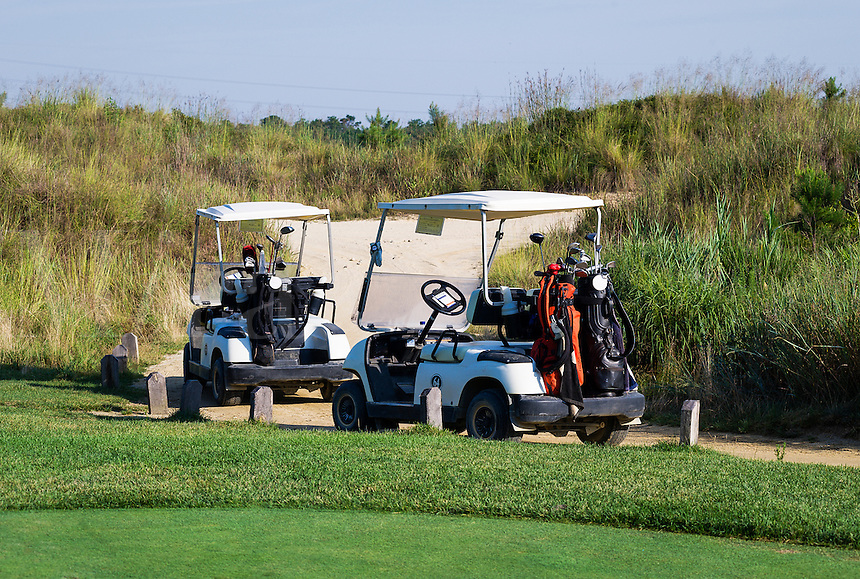 Golf carts parked along the course path.