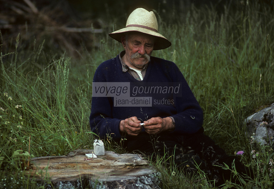 Europe/France/Auvergne/15/Cantal/Tarentaise : Paysan dans les champs roulant une cigarette<br /> PHOTO D'ARCHIVES // ARCHIVAL IMAGES<br /> FRANCE 1980