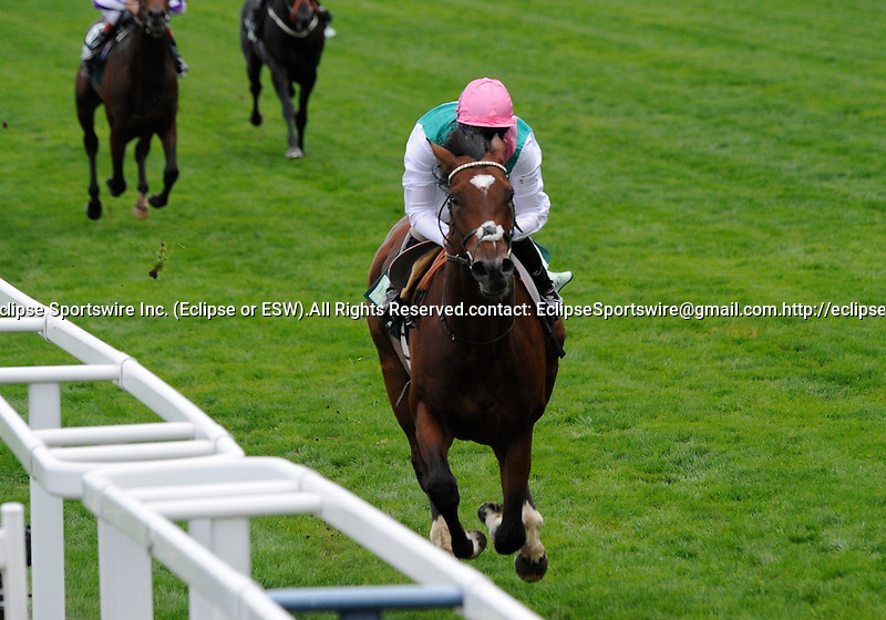 10 September 25: Frankel (no. 2), ridden by Tom Queally and trained by H. R. A. Cecil, wins the Royal Lodge Stakes for two year olds at Ascot Racecourse in Ascot, England.  (Bob Mayberger/Eclipse Sportswire)