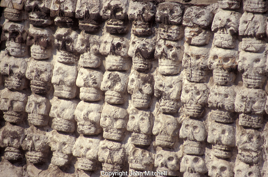 The Wall of Skulls or tzompantli at the Aztec ruins of the Templo Mayor or Great Pyramid of Tenochtitlan, Mexico City