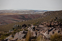 A picture dated March 31, 2013 shows quinoa plantations in the region of the Uyuni Salt Flats, Jirira, in Oruro, Bolivia.  2013  was declared the international year of Quinoa by the UN.  Bolivia is the main producer of quinoa in the world.