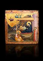"""Gothic painted panel of the Nativity scene by Taddeo Gabbi of Florence, circa 1325, tempera and gold leaf on wood. National Museum of Catalan Art, Barcelona, Spain, inv no: MNAC 212807. Against a black background. <br /> Taddeo Gabbi, one of Giotto's most brilliant disciples, painted this Nativity when he was still part of Giotto's workshop. The painting has many of Giotto's hallmarks such as  spatial illusionism or the reality of figures that can be seen in the nativity of the Peruzzi Chapel.<br /> <br /> SPANISH<br /> <br /> Taddeo Gabbi, uno de los discipulos mas brillantes de Giotto, debio pintar esta Natividad cuando aun formaba parte del taller del maestro. En ella se ven las conquistas de la """"revolucion giottesca"""", como el illusioismo espacial o el realismo de las figuras. Maria arropa a Jesus dentro del establo, mientras los sobrevuela un grupo de angeles. La posicion de uno de ellos y la presencia de una oveja indican que la composicion se completaba a la izquierda con el Anuncio a los pastores. En primer termino aparecen un pensativo Jose y las dos parteras que susurran, un recurso ya utilizado pr Giotto en los frescos de la Capilla Peruzzi."""
