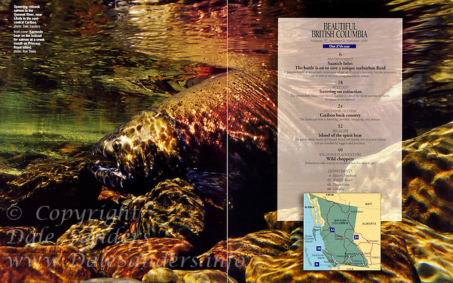 Beautiful British Columbia Magazine Inside Cover - underwater Chinook Salmon
