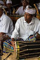 Jatiluwih, Bali, Indonesia.  Drummer in a Gamelan Orchestra,  Luhur Bhujangga Waisnawa Hindu Temple.