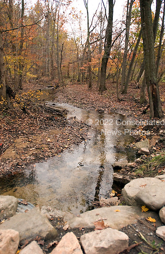 A creek winds through the woods in late Autumn in Berkeley Springs, West Virginia on October 23, 2004. .Credit: Ron Sachs / CNP