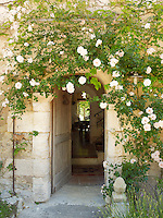 A glimpse of the entrance hall through a pretty white climbing rose hanging around the front door