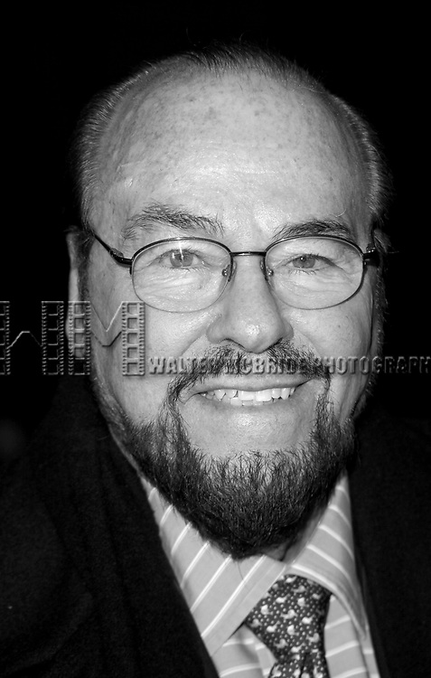 """James Lipton arriving for the Opening Night Performance of Will Ferrell  starring in """"You're Welcome America. A Final Night With George W. Bush"""" at the Cort Theatre in New York City.<br />February 5, 2009"""