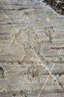 Petroglyph, rock carving, of a warrior apparently jumping maybe carrying a flute. Carved by the ancient Camuni people in the iron age between 1000-1600 BC. Rock no 24,  Foppi di Nadro, Riserva Naturale Incisioni Rupestri di Ceto, Cimbergo e Paspardo, Capo di Ponti, Valcamonica (Val Camonica), Lombardy plain, Italy