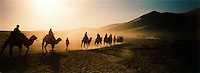 Tourists on camel caravan being led through the Singing Sand Dunes, Silk Route; Dunhuang, Jiuquan, Gansu Province, China.