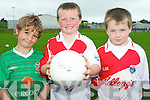 GAA was the name of the game at the Causeway GAA Cúl Camp. .L-R David Joy, Luke Bowler and Owen Lightfoot.