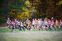The University of Michigan men's cross country team competes at the Wisconsin Adidas Invitational on Friday at the University of Wisconsin Thomas Zimmer Championship Cross Country Course in Madison