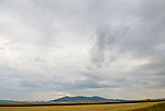 Storm over the Judith Mountains, harvested wheat field in Montana.