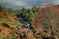 Autumn in Glen Einich, Rothiemurchus, Cairngorm National Park, Highland<br /> <br /> Copyright www.scottishhorizons.co.uk/Keith Fergus 2011 All Rights Reserved
