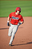 Richard Fecteau (22) of the Orem Owlz rounds the bases after hitting a home run against the Ogden Raptors in Pioneer League action at Lindquist Field on June 21, 2017 in Ogden, Utah. The Owlz defeated the Raptors 16-5. This was Opening Night at home for the Raptors.  (Stephen Smith/Four Seam Images)