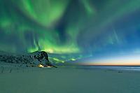 Spring Northern lights - Aurora Borealis fill sky over Myrland, Flakstadøy, Lofoten Islands, Norway