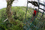 Jake Kerr On Canopy Tower, Tiputini