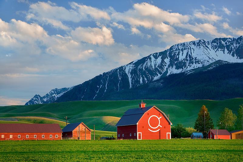 Barn with Wallowa Mountains. Near Joseph, Oregon