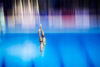 RUS BONDAR Aleksandr MINIBAEV Viktor silver medal<br /> Diving<br /> Men's 10m synchronised platform final<br /> 13/07/2017 <br /> XVII FINA World Championships Aquatics<br /> Duna Arena<br /> Photo @ Giorgio Perottino/Deepbluemedia/Insidefoto