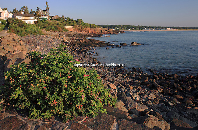 View along Marginal Way, a walking path in Ogunquit, Maine, USA