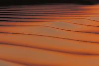 Sunset on the Chambal River in Uttar Pradesh, India