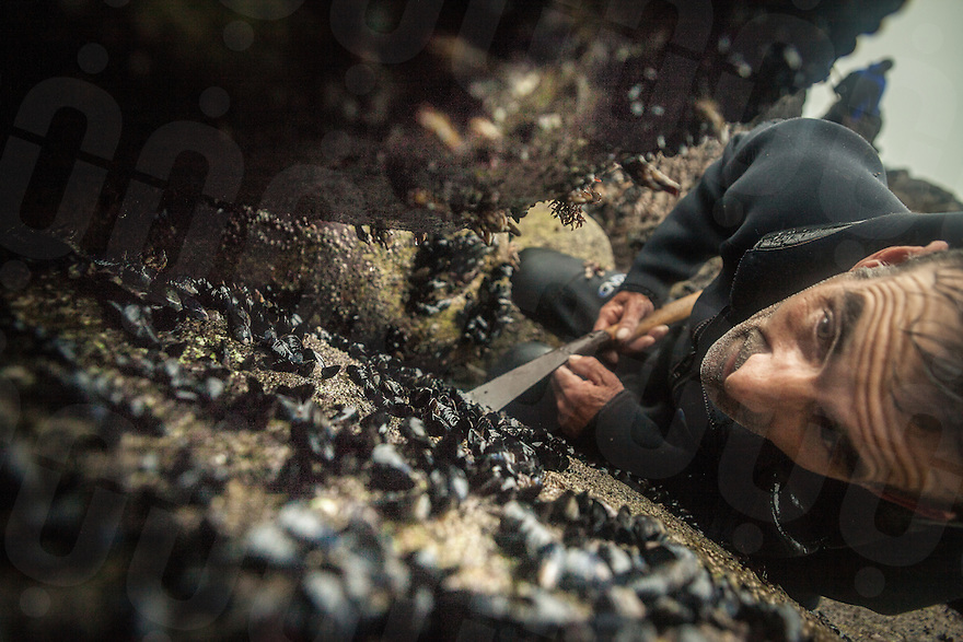 December 20, 2011 - Laxe (La Coruña). A percebeiro inspects a rock to find percebes. © Thomas Cristofoletti 2011