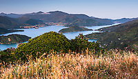 Blue twilight over Kenepuru Sound in Marlborough Sounds, Nelson Region, Marlborough, South Island, New Zealand