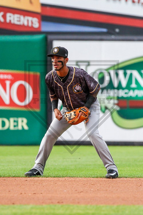 Quad Cities River Bandits shortstop Jonathan Arauz (22) during a Midwest League game against the Wisconsin Timber Rattlers on June 8, 2017 at Fox Cities Stadium in Appleton, Wisconsin.  Wisconsin defeated Quad Cities 8-3. (Brad Krause/Krause Sports Photography)