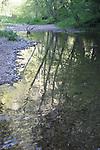 Waddell Creek reflection,  Rancho Del Oso