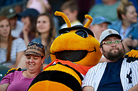 Bumble, the Salt Lake Bees mascot sits with the fans during the game against the Las Vegas 51s at Smith's Ballpark on May 7, 2018 in Salt Lake City, Utah. The 51s defeated the Bees 10-8. (Stephen Smith/Four Seam Images)