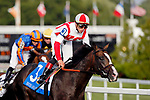 August 10, 2019 : Bricks and Mortar, ridden by Irad Ortiz Jr., after winning the Arlington Million during Arlington Million Day at Arlington International Racecourse in Arlington Heights, Illinois. Jon Durr/Eclipse Sportswire/CSM
