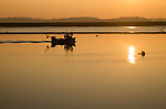 Small fishing boat at sunset in winter on the River Deben, Ramsholt, Suffolk, England, UK
