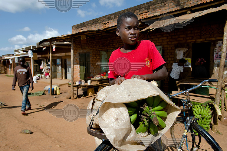 Ronnie Mutumba loading his bicycle with bananas to carry back to his home.