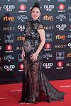 Cristina Brondo attends red carpet of Goya Cinema Awards 2018 at Madrid Marriott Auditorium in Madrid , Spain. February 03, 2018. (ALTERPHOTOS/Borja B.Hojas)