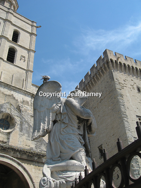 A pigeon perches on Angel's wings, Pope's Palace, Avignon, France