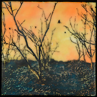 Grove series encaustic painting with mixed media photography #199