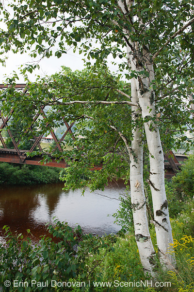 Railroad trestle along the old Boston and Maine Railroad near Fabyans in Carroll, New Hampshire USA
