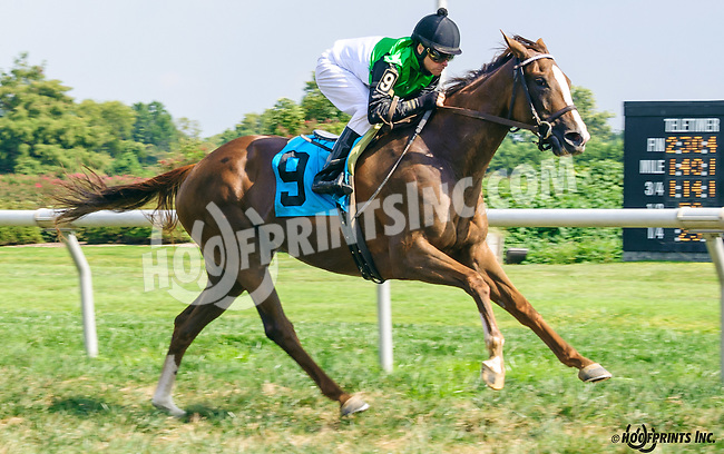 Talaria winning at Delaware Park on 9/8/16