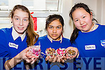 St Brigids Presentation school students Rachela Matykiewicz, Ema Monsur and Elaine Wang selling their products at the school craft fair on Monday