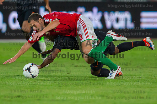 Netherlands' Jeremain Lens (back) and Hungary's Vilmos Vanczakhun (front) fight for the ball during a World Cup 2014 qualifying soccer match Hungary playing against Netherlands in Budapest, Hungary on September 11, 2012. ATTILA VOLGYI