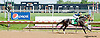 Italian Nany winning at Delaware Park on 5/25/13.