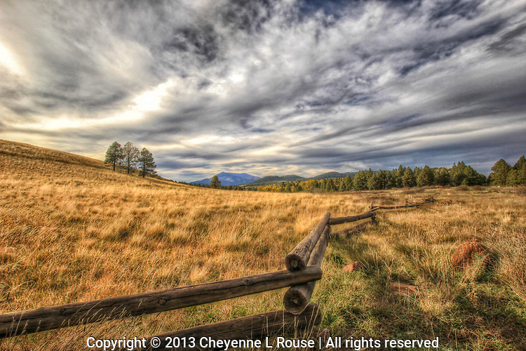 Fall comes to the Prairie - Arizona - Hart Prairie, Flagstaff