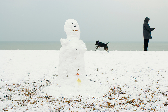A dog adds the finishing touch to a snowman on Brighton beach. England 2009.