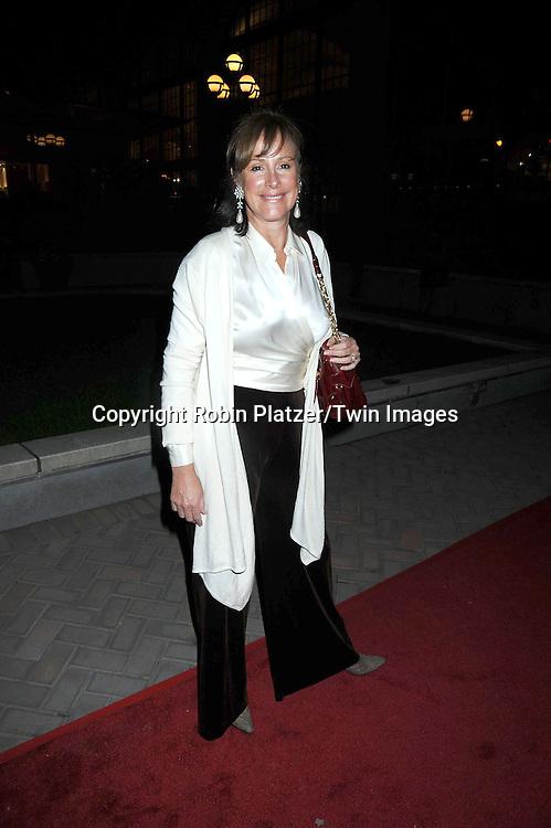 Hillary B Smith  attending ABC Casino Night on October 28, 2010 at Guastavinos in New York City. .