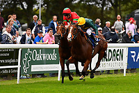 Winner of M J Church British EBF Novice Stakes (Plus 10) (Div 2),  Bullingdon ridden by Sean Levey and trained by Richard Hannon during Afternoon Racing at Salisbury Racecourse on 7th August 2017