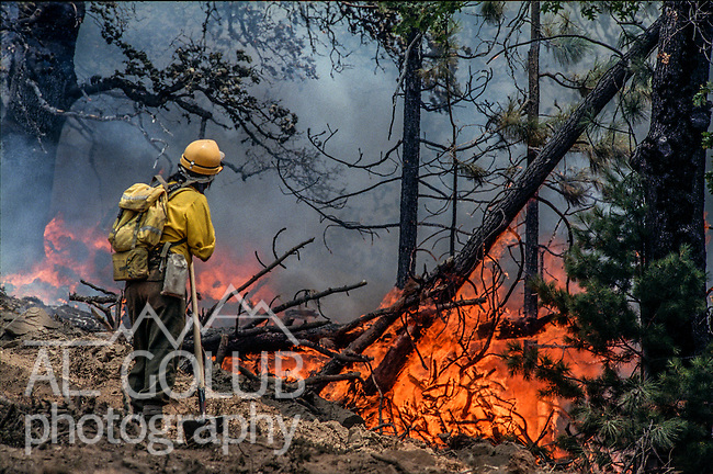 August 11, 1990 Yosemite National Park  --  A-Rock (Arch Rock) Fire  -- Firefighter Andy Bennett from Fort Apache, Arizona watches the fireline at Dry Gulch in Yosemite National Park. The Arch Rock Fire burned over 16,000 acres of Yosemite National Park and the Stanislaus National Forest.  At the same time across the Merced River, the Steamboat Fire burned over 5,000 acres of both Yosemite National Park and the Sierra National Forest.
