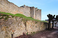 Ramparts and Northern side wall of the Porte Saint Jean, or St John's Gate, built 1286-1306, at the medieval castle of Chateau-Thierry, Picardy, France. The first fortifications on this spur over the river Marne date from the 4th century and the first castle was built in the 9th century Merovingian period by the counts of Vermandois. Thibaud II enlarged the castle in the 12th century and built the Tour Thibaud, and Thibaud IV expanded it significantly in the 13th century to include 17 defensive towers in the walls and an East and South gate. The castle was largely destroyed in the French Revolution after having been a royal palace since 1285. In 1814 it was used as a citadel for Napoleonic troops. Picture by Manuel Cohen
