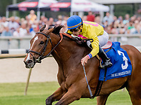 OLDSMAR, FL - MARCH 10: Fourstar Crook #3, ridden by Irad Ortiz, Jr., wins the Hillsborough Stakes on Tampa Derby Day at Tampa Bay Downs on March 10, 2018 in Oldsmar, FL. (Photo by Scott Serio/Eclipse Sportswire/Getty Images)