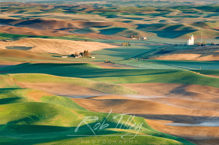Palouse Farm Fields From Steptoe Butte SP at Sunrise, Whitman Co., USA